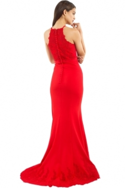jadore_-_jx053_-_serena_gown_-_red_-_back